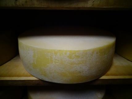 France - Visite de la cave à fromage à la ferme de Sainte-Luce.
