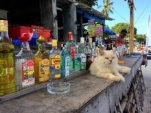 Thaïlande - Beach troquet
